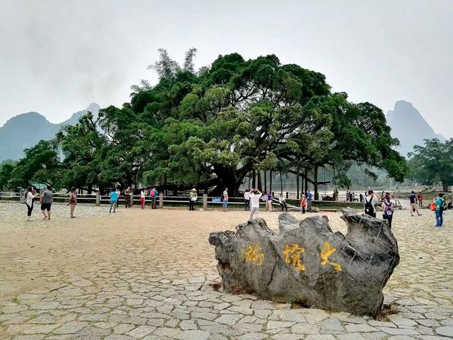 rongshugongyuan